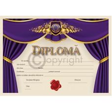 Diploma D1 2019