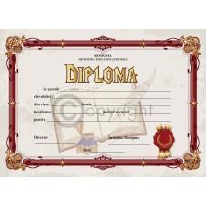 Diploma D3 2019