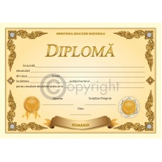 Diploma D5 2019
