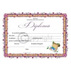 Diploma D8 2019