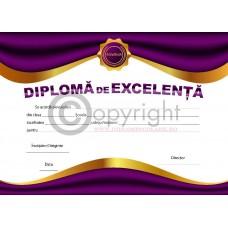 DIPLOMA DE EXCELENTA 2 2018