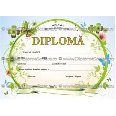 Diploma D4 2018
