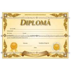 Diploma D5 2018
