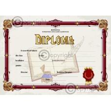 Diploma D6 2018