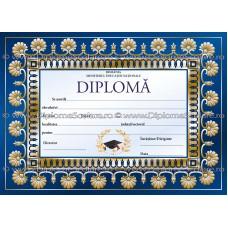 Diploma D7 2018