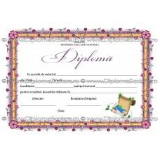 Diploma D8 2018