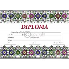Diploma D9 2018