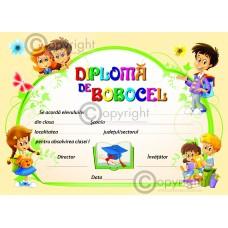 DIPLOMA BOBOCEL 2018