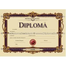 Diploma D1 2017