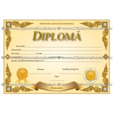 Diploma D5 2017