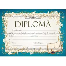 Diploma D6 2017
