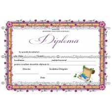 Diploma D8 2017